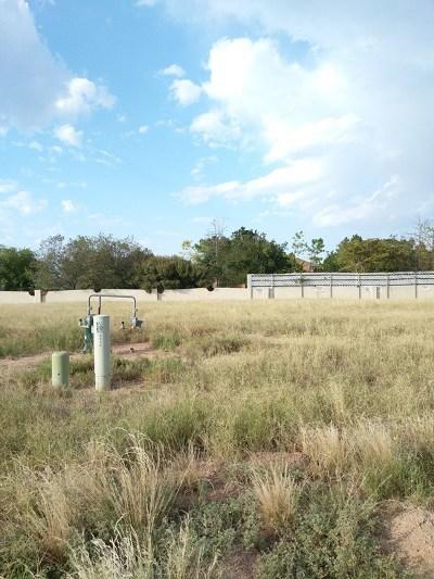 Midland Residential Lots & Land For Sale: 5314 Ellen Jayne Way