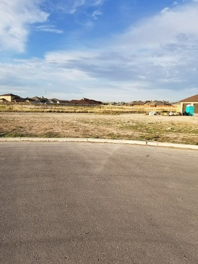 Odessa Residential Lots & Land For Sale: 3101 Seafin St.