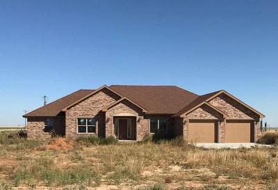 Stanton Single Family Home For Sale: 1990 Denson Rd