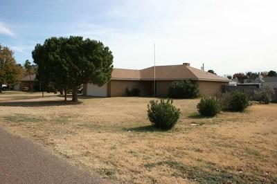 Midland Single Family Home For Sale: 10900 E County Rd 108