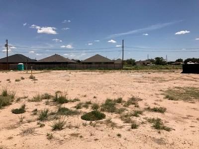 Midland Single Family Home For Sale: 2810 Carver