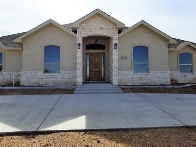 Midland Single Family Home For Sale: 2803 Fairfield Lane