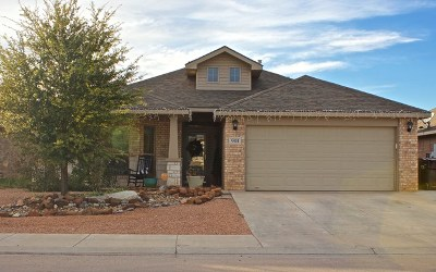 Midland Single Family Home For Sale: 901 Nolan Ryan Dr