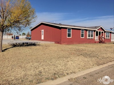Odessa TX Single Family Home For Sale: $225,000