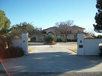 Midland TX Single Family Home For Sale: $1,499,000