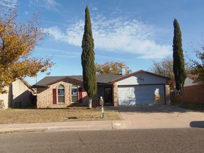 Odessa Single Family Home For Sale: 3128 Magill St