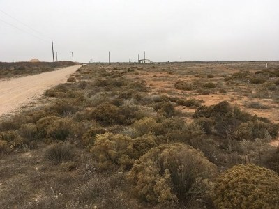 Midland TX Residential Lots & Land For Sale: $180,000