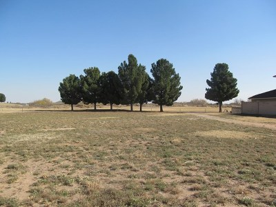 Odessa Residential Lots & Land For Sale: 16 San Marcos Court