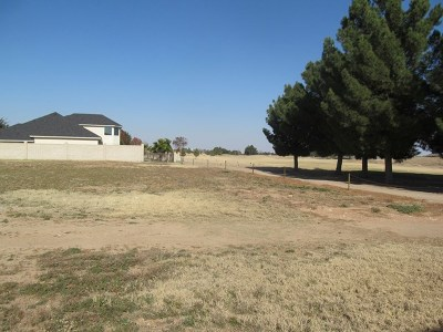 Odessa Residential Lots & Land For Sale: 17 San Marcos Court