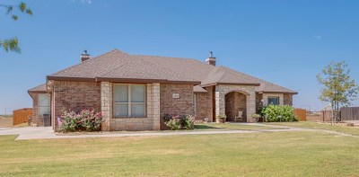 Midland Single Family Home For Sale: 2501 N County Rd 1278