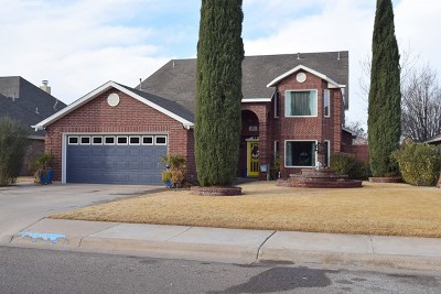 Midland Single Family Home For Sale: 5013 Whitman Dr