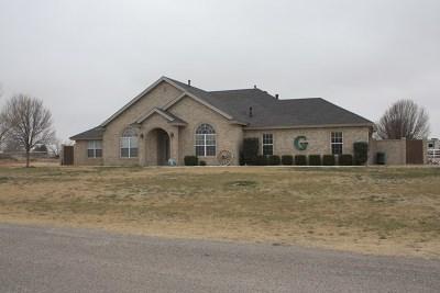 Midland Single Family Home For Sale: 10302 E County Rd 105