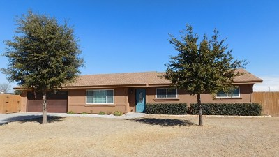 Midland Single Family Home For Sale: 3405 S County Rd 1067