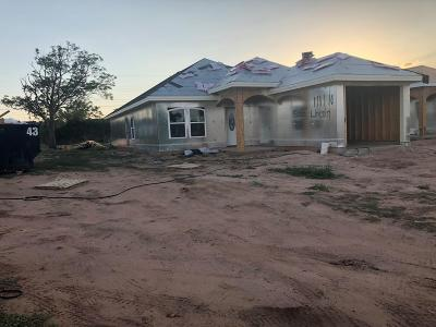 Odessa TX Single Family Home For Sale: $204,000