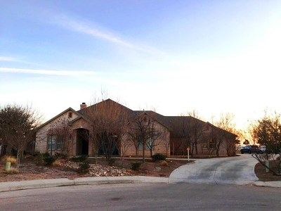 Midland Single Family Home For Sale: 6519 Los Conchos Lane