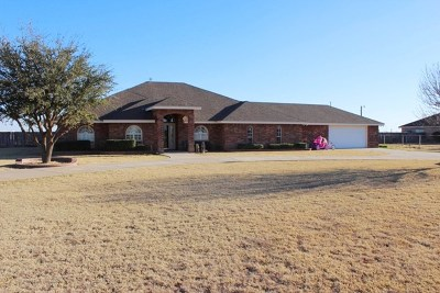 Midland Single Family Home For Sale: 11601 W County Rd 58