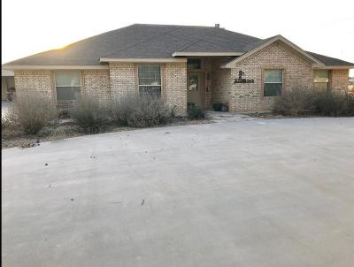 Midland Single Family Home For Sale: 7515 N County Rd 1297