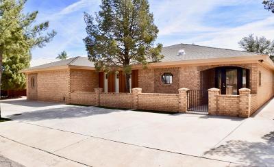 Midland Single Family Home For Sale: 4417 Lanham St