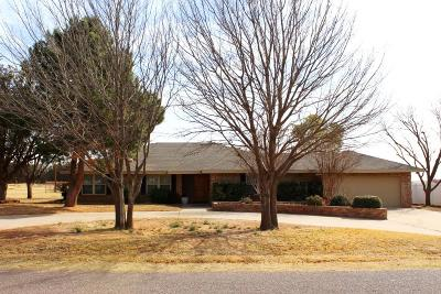 Midland Single Family Home For Sale: 3908 Irvin Dr