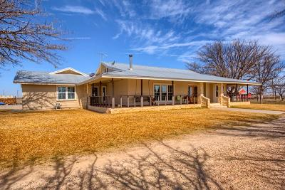 Odessa TX Single Family Home For Sale: $500,000
