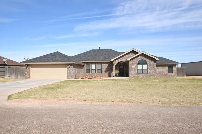 Midland Single Family Home For Sale: 12301 E County Rd 111