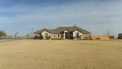 Midland Single Family Home For Sale: 11901 Fm 307