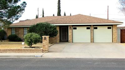 Odessa TX Single Family Home For Sale: $245,000