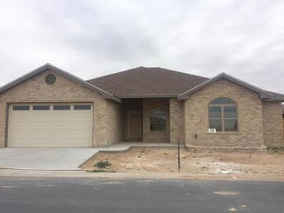 Midland TX Single Family Home For Sale: $299,000