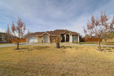 Odessa Single Family Home For Sale: 8705 Claymoor Dr