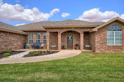 Midland Single Family Home For Sale: 3105 S County Rd 1067
