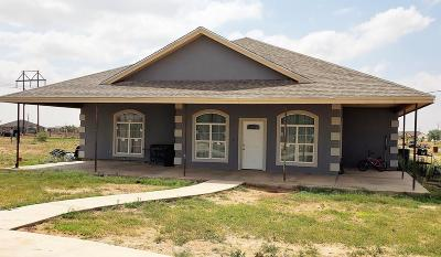 Midland TX Single Family Home For Sale: $275,000