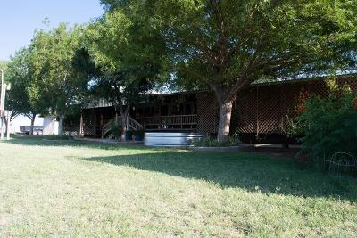 Midland Single Family Home For Sale: 10305 W County Rd 152