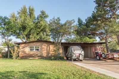 Midland Single Family Home For Sale: 2009 N Community Lane