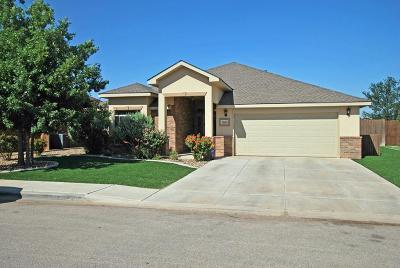 Odessa Single Family Home For Sale: 3100 San Pedro Dr