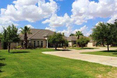 Midland Single Family Home For Sale: 604 Solomon Lane