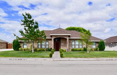 Odessa TX Single Family Home For Sale: $399,900