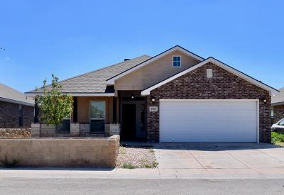Odessa Single Family Home For Sale: 9909 Lamar Ave