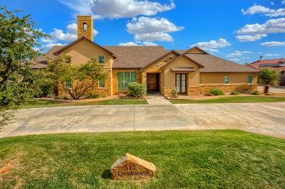 Midland Single Family Home For Sale: 513 Charismatic Dr