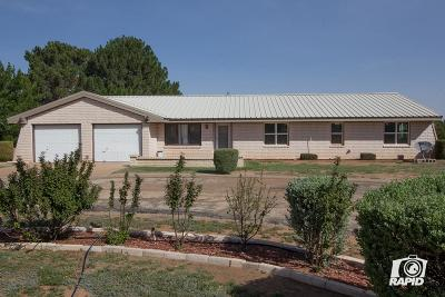 Midland Single Family Home For Sale: 3310 W County Rd 183