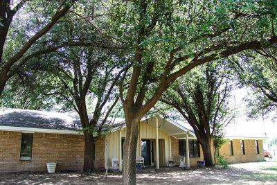 Midland Single Family Home For Sale: 4402 S County Rd 1184