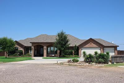 Midland Single Family Home For Sale: 11618 W County Rd 54