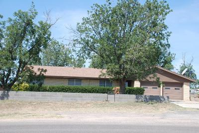 Midland Single Family Home For Sale: 4006 S County Rd 1135
