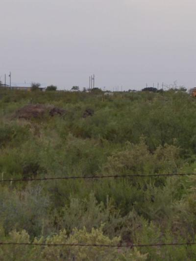 Odessa TX Residential Lots & Land For Sale: $140,000