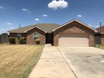 Midland TX Rental For Rent: $2,500