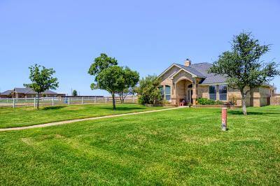 Midland Single Family Home For Sale: 12215 E County Rd 101