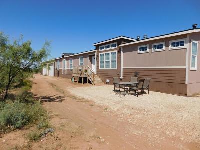 Midland Single Family Home For Sale: 12204 W Fm 1787