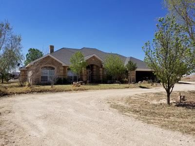 Midland Single Family Home For Sale: 7000 S County Rd 1165