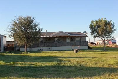 Stanton Single Family Home For Sale: 2700 S County Rd 1050