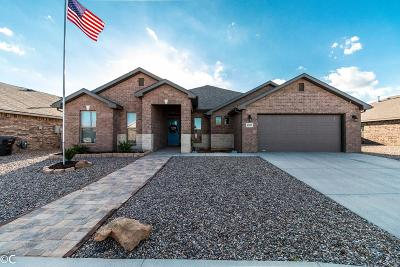 Midland Single Family Home For Sale: 6907 Corral Dr