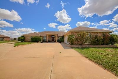 Midland Single Family Home For Sale: 11603 W County Rd 58